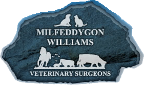Williams Veterinary Surgeons